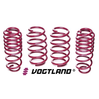 Vogtland Springs - Suits BMW Z4 Typ Z85 Roadster. Lowering 30mm Front and 30mm Rear  Part# 951076